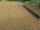 タマネギの苗床