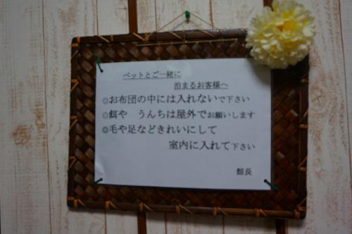 ibusuki (6)