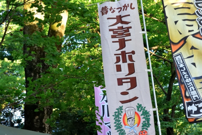 0008_hikawa_hotaruDSC_1468.jpg
