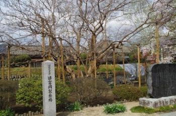 またまた富岡製糸場にて3