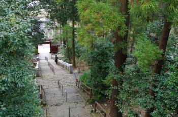 達磨寺の長い階段を登りきりましてから