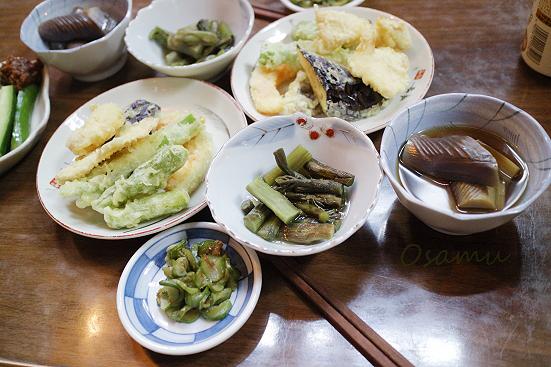 17-08-02_naebayama-nigata_00478.jpg