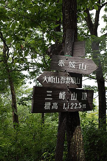 17-08-19_jyousyumitsumine-gunma_00234.jpg