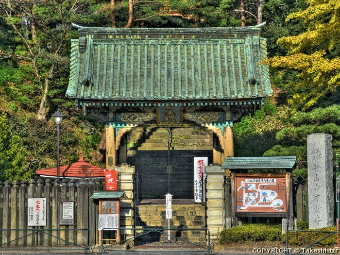 旧台徳院霊廟勅額門,丁子門及び御成門