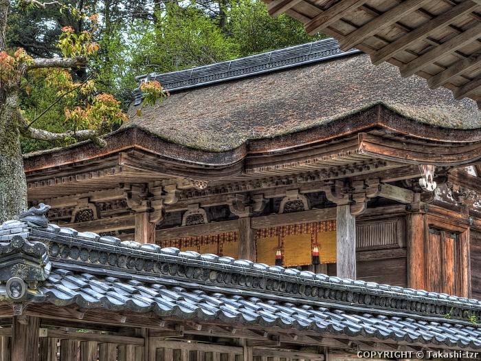 奥石神社本殿
