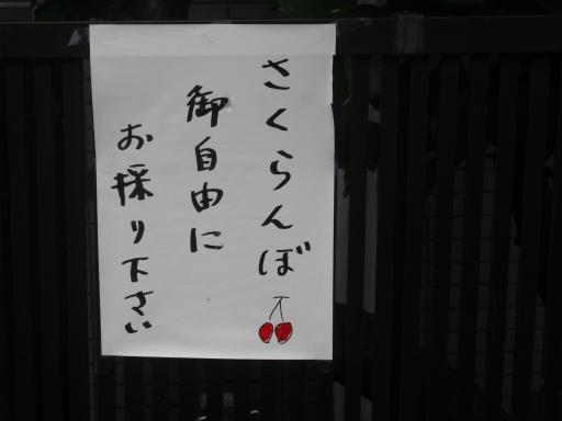 20170516・中野近辺1-12