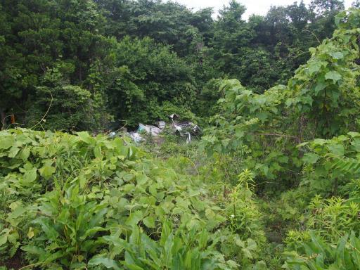 20170604・武蔵村山の秘密基地3-15・山頂はゴミ捨て場