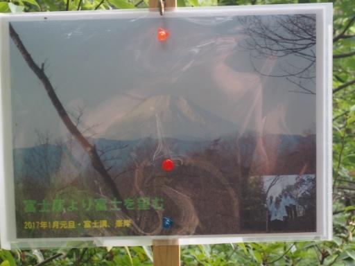 20170604・武蔵村山の秘密基地4-08・大