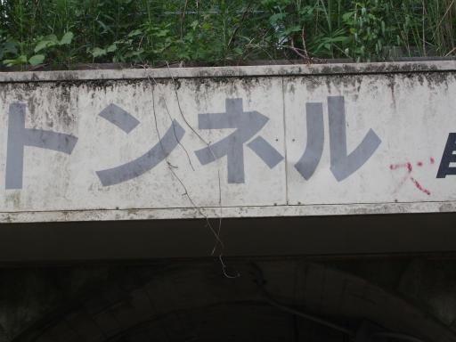 20170604・武蔵村山の秘密基地4-27・トンネルズって