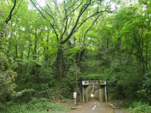 20170604・武蔵村山の秘密基地空20