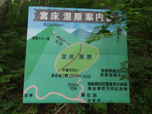 20170618・湿原とヒメサユリの旅4-11・大