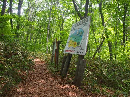 20170619・湿原とヒメサユリの旅7-05