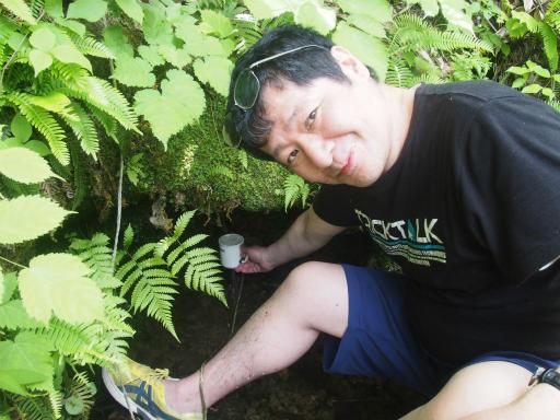 20170619・湿原とヒメサユリの旅8-07