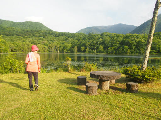 20170619・湿原とヒメサユリの旅9-13