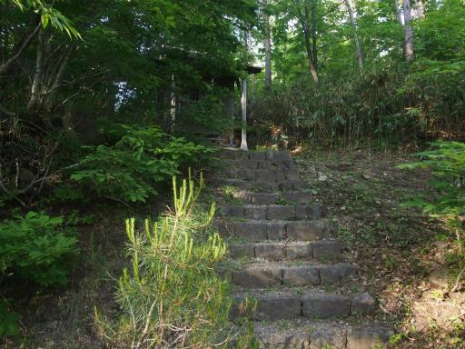 20170619・湿原とヒメサユリの旅9-23