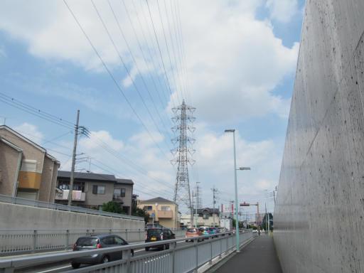 20170805・入間川七夕1-06