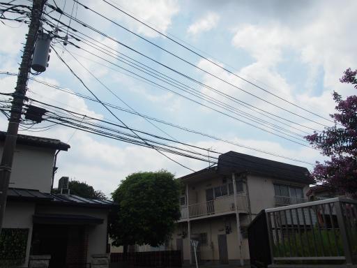 20170805・入間川七夕1-01