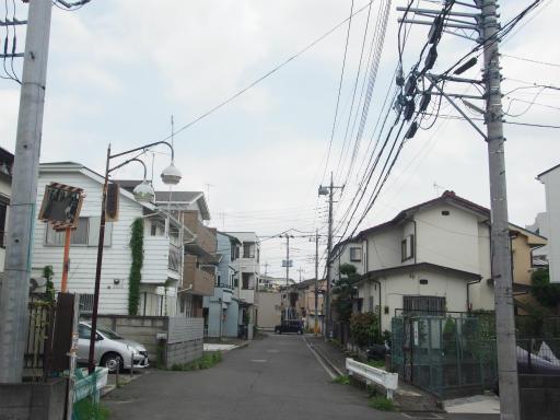 20170805・入間川七夕1-02