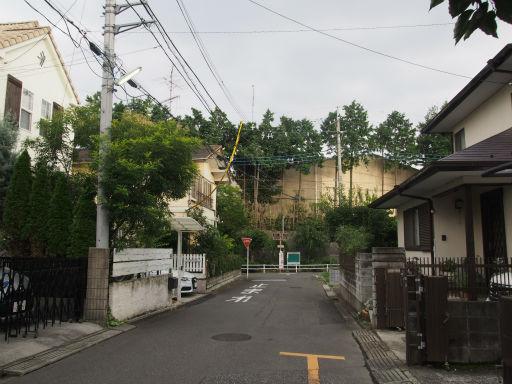 20170812・荒幡富士花火1-04