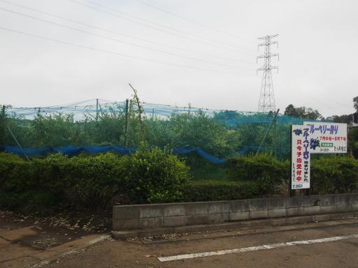 20170819・電車夏まつり1-17