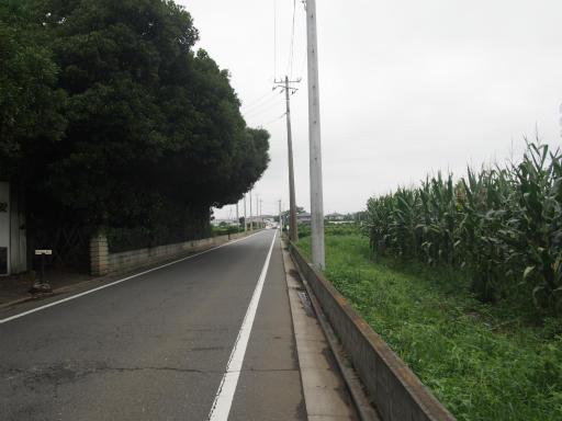 20170819・電車夏まつり1-22