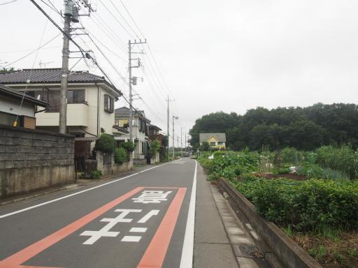 20170819・電車夏まつり1-21