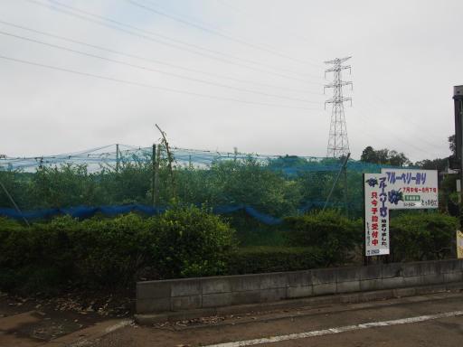 20170819・電車夏まつり空03