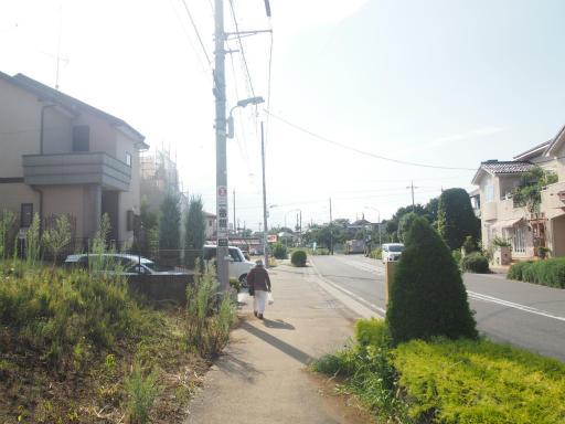 20170903・秋の狭山湖散歩06