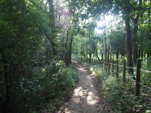20170903・秋の狭山湖散歩11