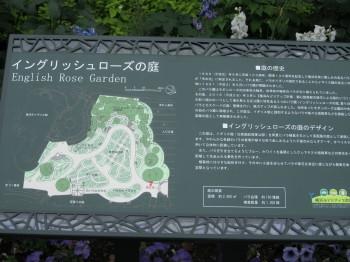 緑化フェア0001