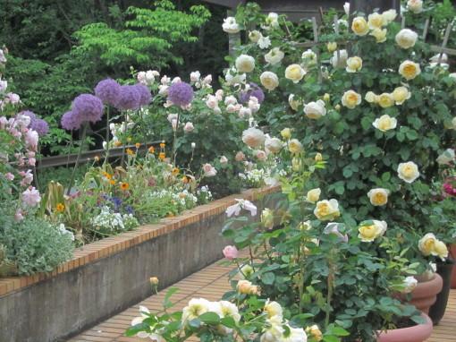 植物公園0001_1
