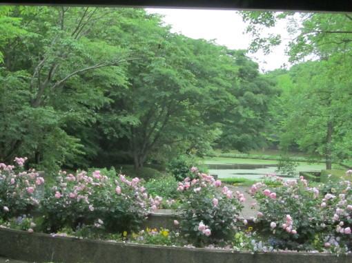 植物公園0001_2