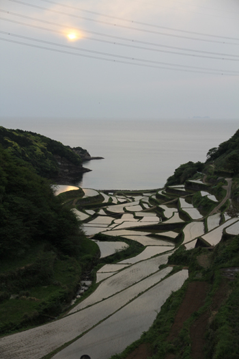 -浜野浦の棚田2017-6