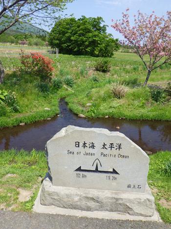 堺田分水嶺2017-5
