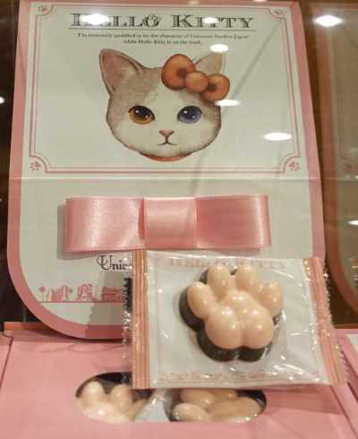 Kittyちゃん