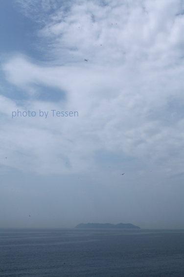 IMG_8109沼島