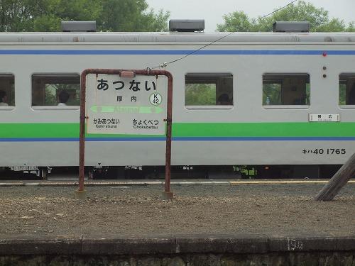 P1013324.jpg