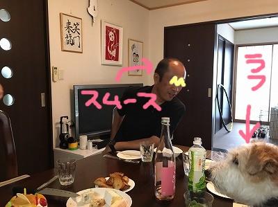 2017_7_23_41.jpg
