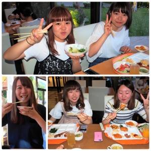 collage_photocat (2)