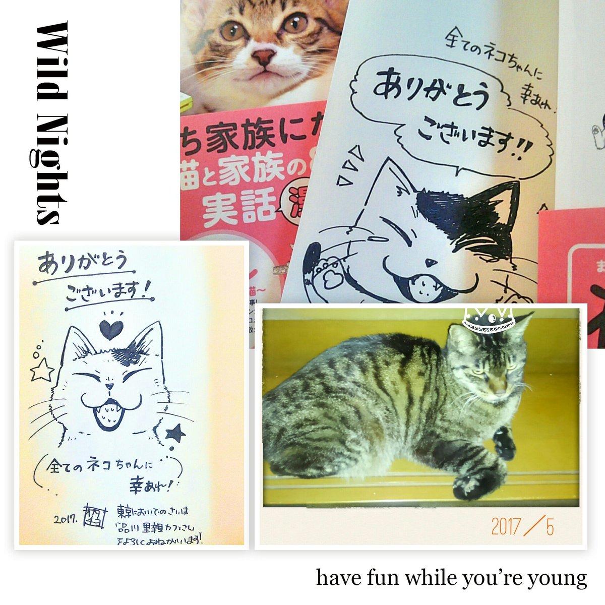 猫祭り単行本