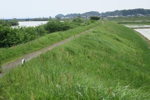「恋瀬川サイクリングコース管理運営協議会」⑦