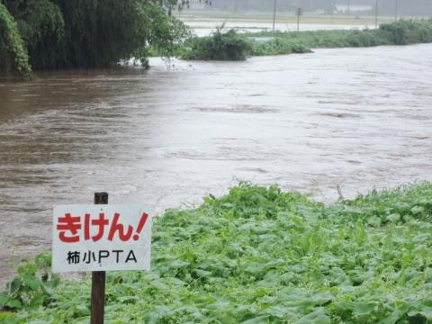 「恋瀬川氾濫対策工事が進められています!」②