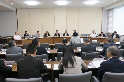 「平成29年8月総務企画委員会」参考人意見聴取①