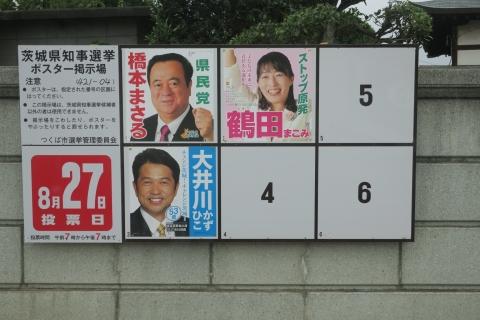 「2平成29年茨城県知事選挙ポスター掲示板」
