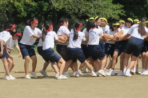 「石岡市内中学校体育祭」 (5)