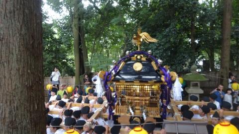 「平成29年9月16日神幸祭」神輿渡御⑤