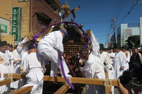「平成29年9月18日還幸祭」神輿渡御 (9)