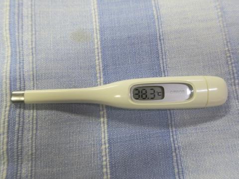 平成29年10月23日「熱が38度3分もあります。」①