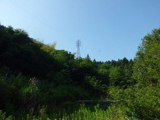 富士川線45号