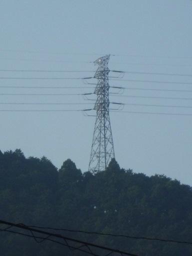 富士川線47号